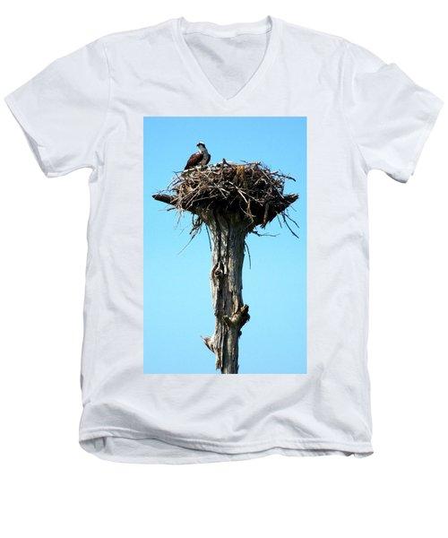 Osprey Point Men's V-Neck T-Shirt by Karen Wiles