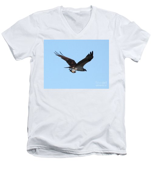 Osprey With Fish Men's V-Neck T-Shirt by Carol Groenen