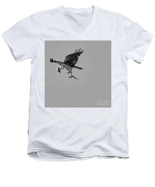 Osprey With Prey Men's V-Neck T-Shirt
