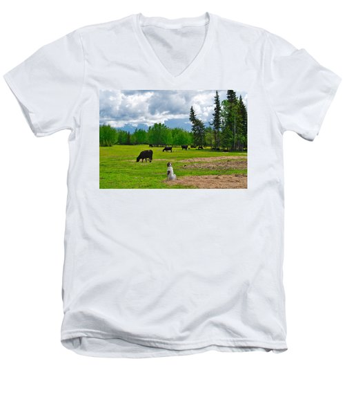 Out In The Pasture Men's V-Neck T-Shirt