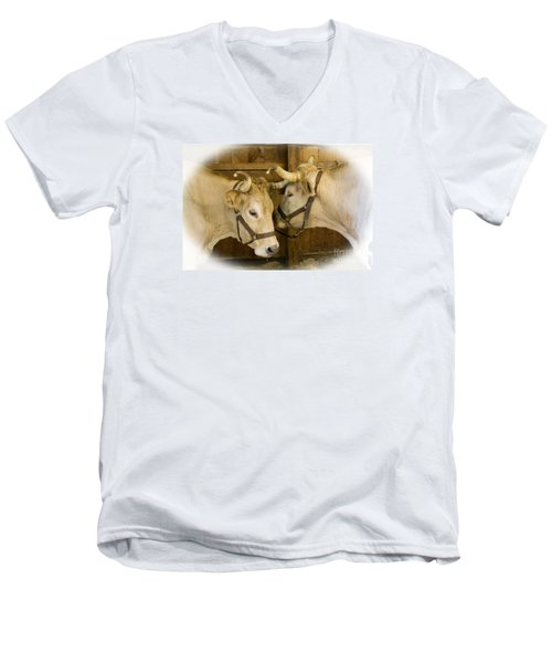 Oxen Team Men's V-Neck T-Shirt