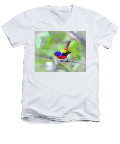 Painted Bunting Men's V-Neck T-Shirt