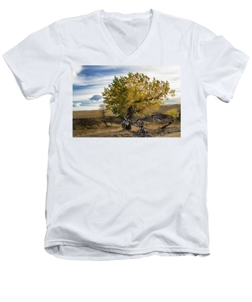 Painted By Nature Men's V-Neck T-Shirt