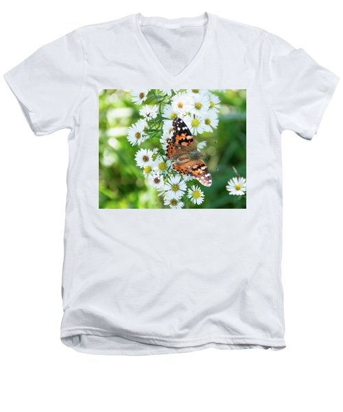 Painted Lady Butterfly Men's V-Neck T-Shirt