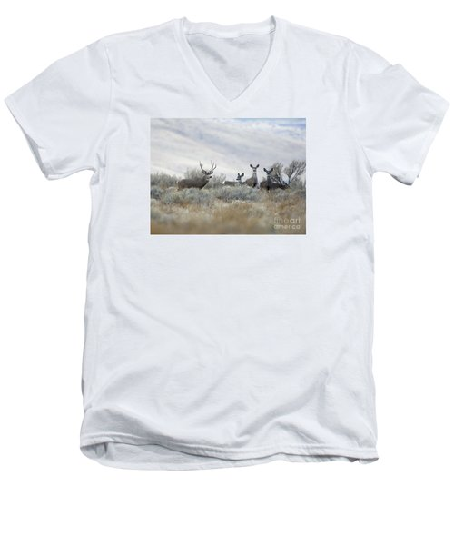 Painting Men's V-Neck T-Shirt