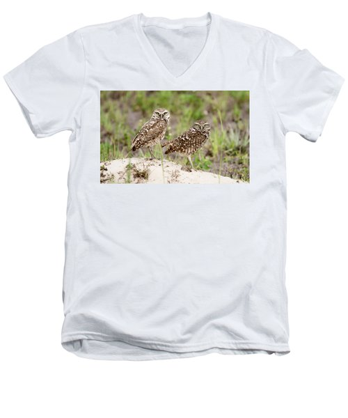 Pair Of Burrowing Owls Men's V-Neck T-Shirt