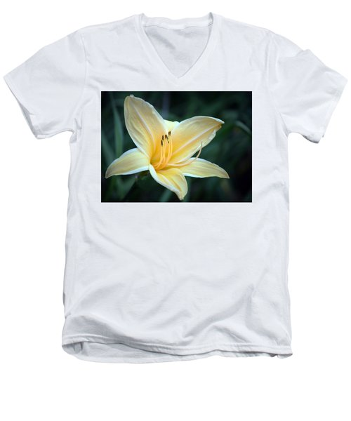 Pale Yellow Day Lily Men's V-Neck T-Shirt