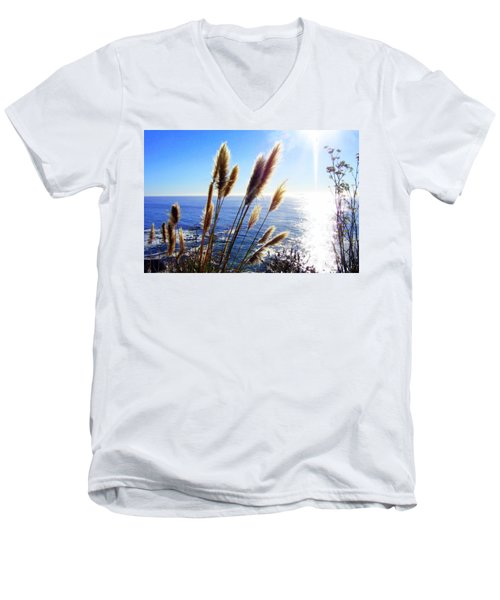 Pampas Grass And The Pacific 2 Men's V-Neck T-Shirt