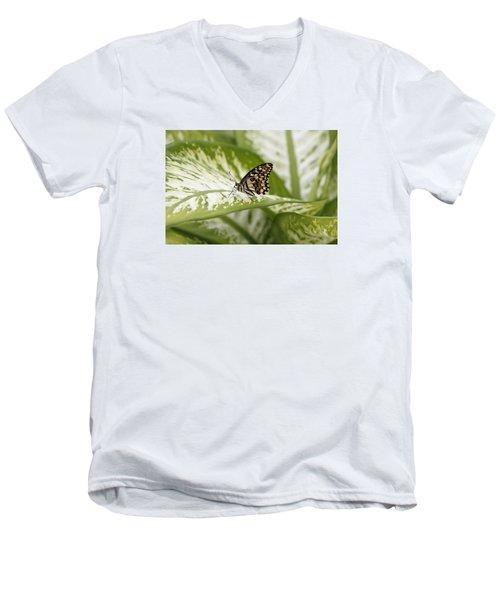 Papilio Demoleus Men's V-Neck T-Shirt by Goyo Ambrosio
