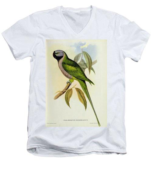 Parakeet Men's V-Neck T-Shirt by John Gould