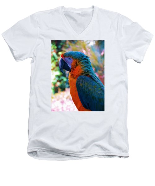 Parrot 4 Men's V-Neck T-Shirt