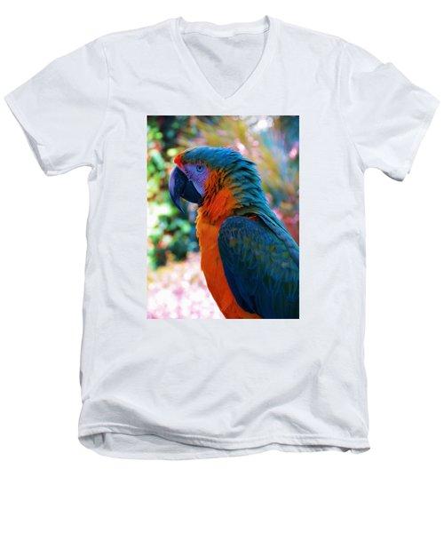 Parrot 4 Men's V-Neck T-Shirt