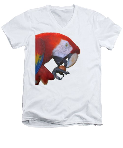 Parrot Having A Snack Men's V-Neck T-Shirt by Pamela Walton
