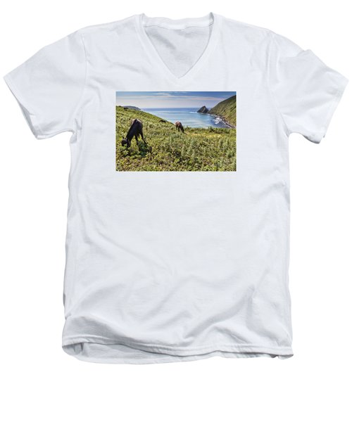 Pasture #2746 Men's V-Neck T-Shirt