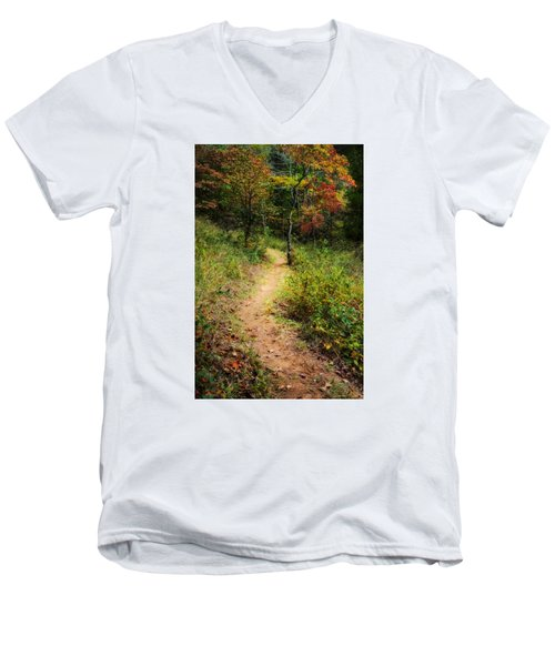 Path In The Prairie Men's V-Neck T-Shirt by Diana Boyd