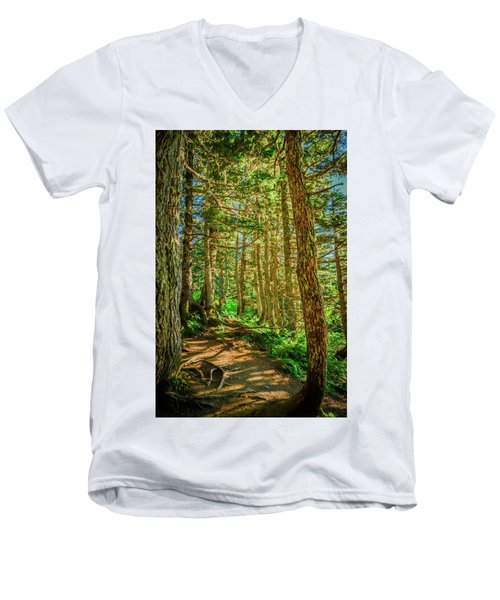 Path In The Trees Men's V-Neck T-Shirt