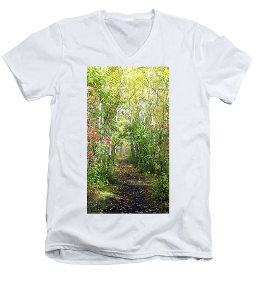 Path In The Woods 3 Men's V-Neck T-Shirt