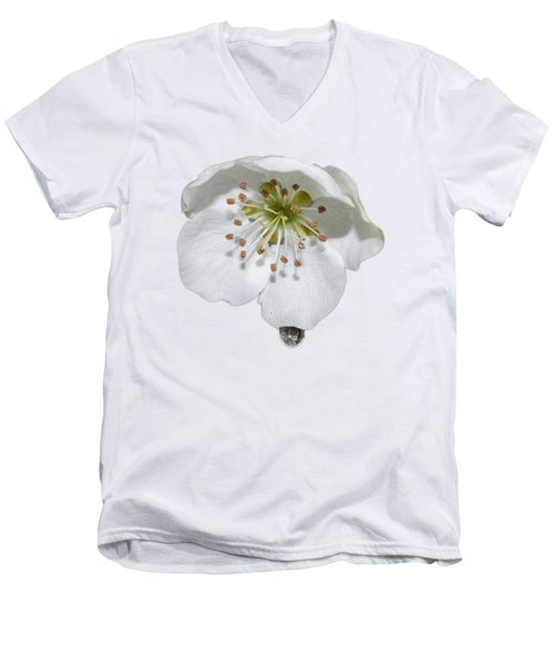 Pear Bloom Tee Shirt Men's V-Neck T-Shirt
