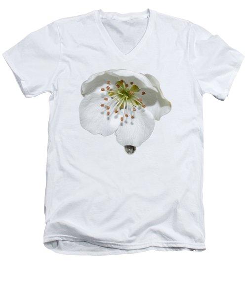 Pear Bloom Tee Shirt Men's V-Neck T-Shirt