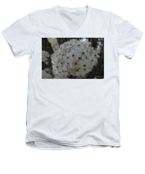 Pear Blossoms Men's V-Neck T-Shirt