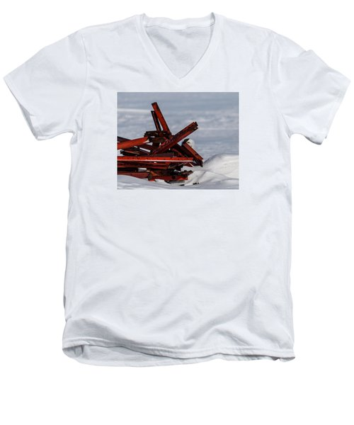 Men's V-Neck T-Shirt featuring the photograph Peek-a-boo by Dan Traun
