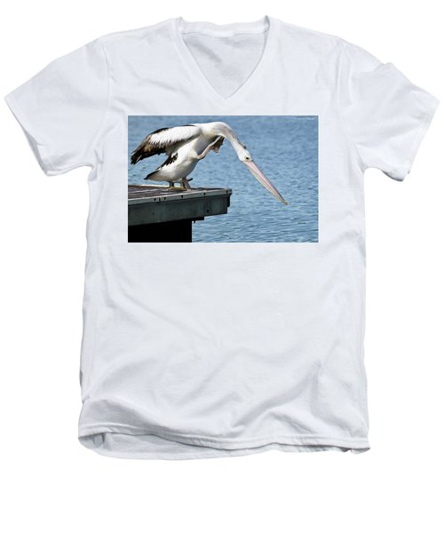 Pelican Beauty 66633 Men's V-Neck T-Shirt by Kevin Chippindall