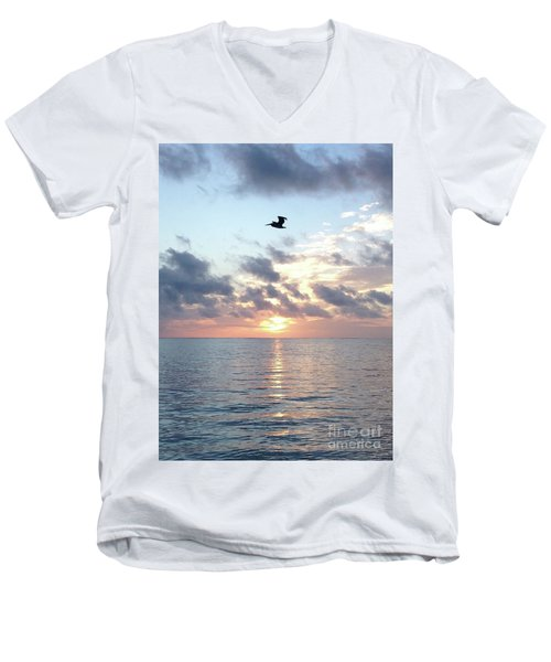 Pelican Dawn Men's V-Neck T-Shirt