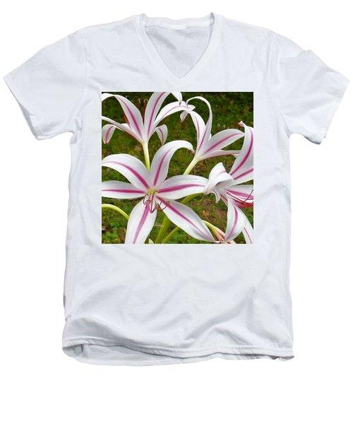 Peppermint Lilies Men's V-Neck T-Shirt