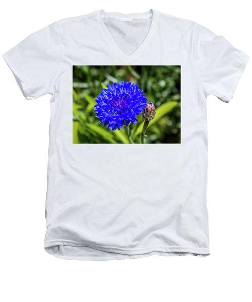 Perky Cornflower Men's V-Neck T-Shirt