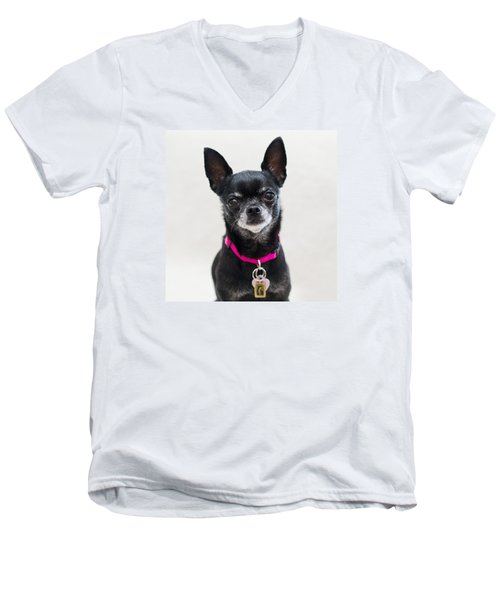 Perlita 2 Men's V-Neck T-Shirt