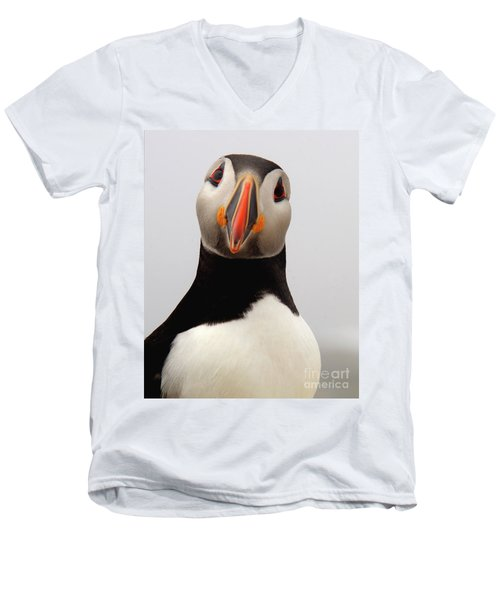 Peter The Puffin Men's V-Neck T-Shirt by Jane Axman
