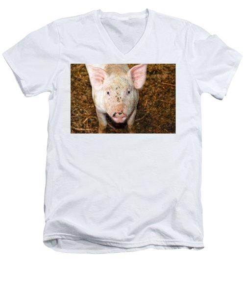 Pig Men's V-Neck T-Shirt