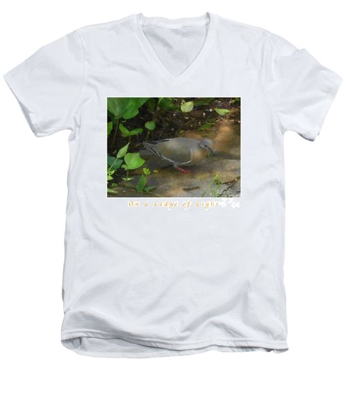 Pigeon Poster Men's V-Neck T-Shirt by Felipe Adan Lerma