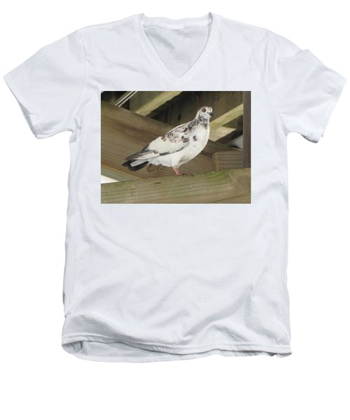 Pigeon Under Daytona Beach Pier  Men's V-Neck T-Shirt
