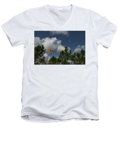 Pine Lily And Pines Men's V-Neck T-Shirt
