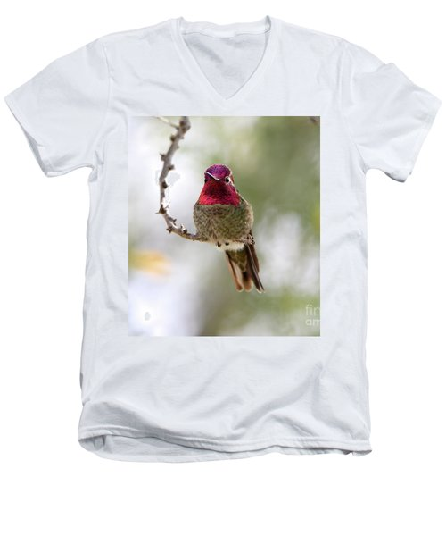 Pink Anna's Hummingbird Men's V-Neck T-Shirt