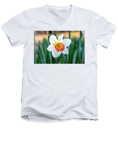 Pink Cup Solo Daffodil Men's V-Neck T-Shirt