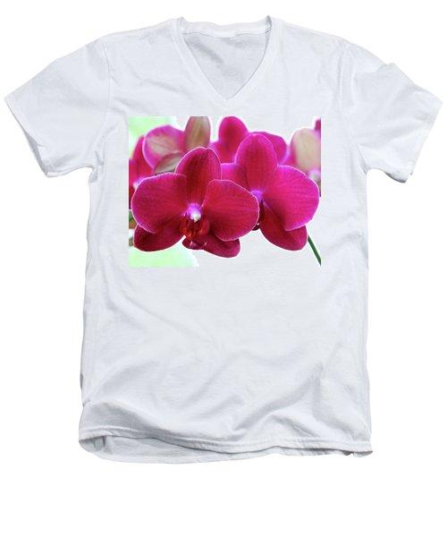 Red Orchid Men's V-Neck T-Shirt