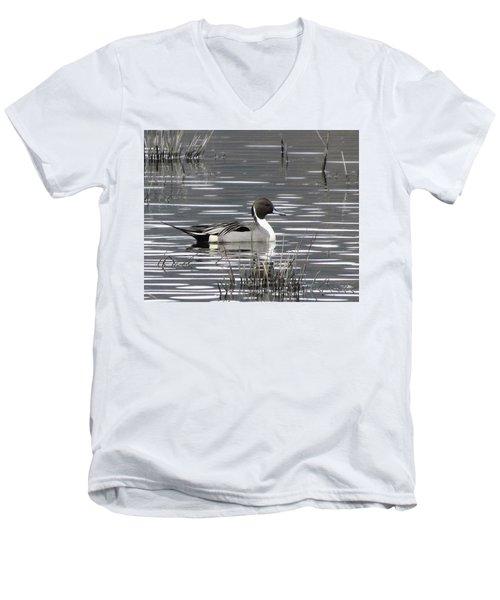 Pintail Duck Men's V-Neck T-Shirt