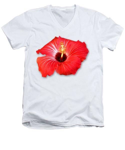 Pistil Power 2 Sehemu Mbili Unyenyekevu Men's V-Neck T-Shirt