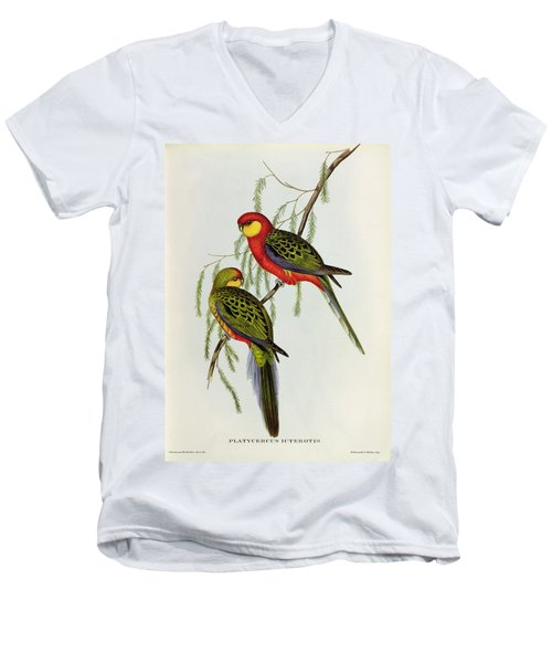 Platycercus Icterotis Men's V-Neck T-Shirt