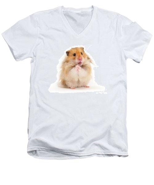 Please Be Mine Men's V-Neck T-Shirt