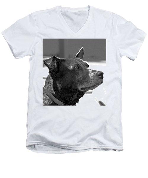 Please? Men's V-Neck T-Shirt