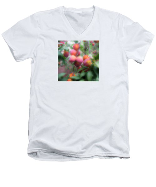 Plum Delight Men's V-Neck T-Shirt