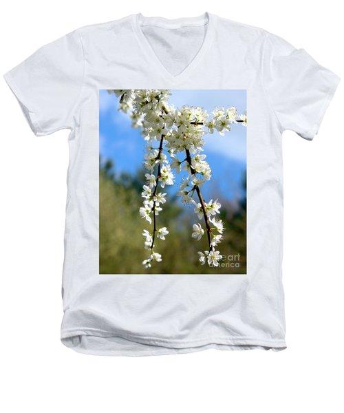 Plum Tree Blossoms Men's V-Neck T-Shirt