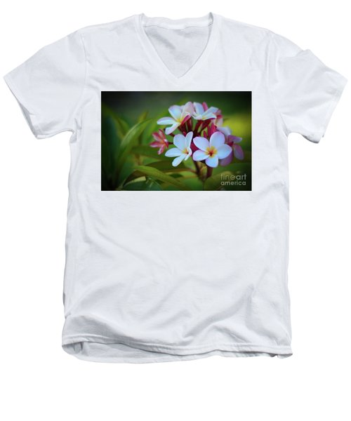 Plumeria Sunset Men's V-Neck T-Shirt by Kelly Wade