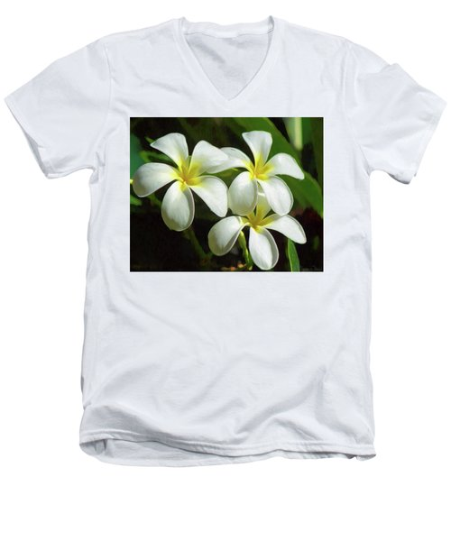 Plumeria Trio Men's V-Neck T-Shirt