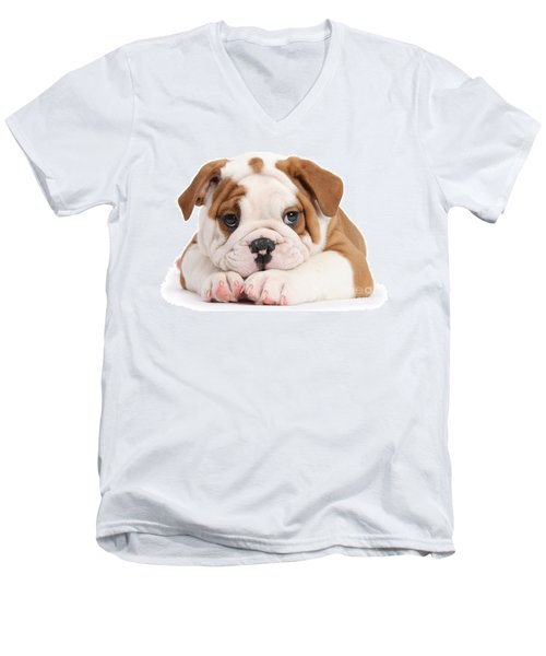 Po-faced Bulldog Men's V-Neck T-Shirt