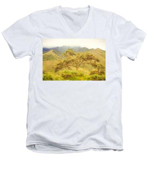 Podocarpus Tree Men's V-Neck T-Shirt