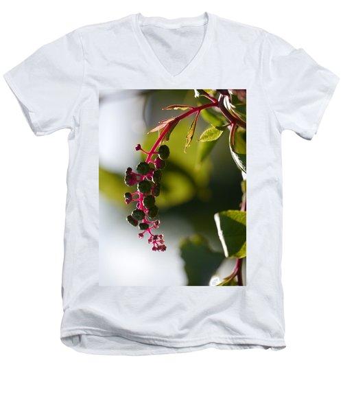 Poke Sallet Anyone? Men's V-Neck T-Shirt